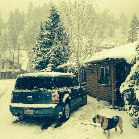 Golden Eagle Lodge: Outside our room.  Winter Wonderland