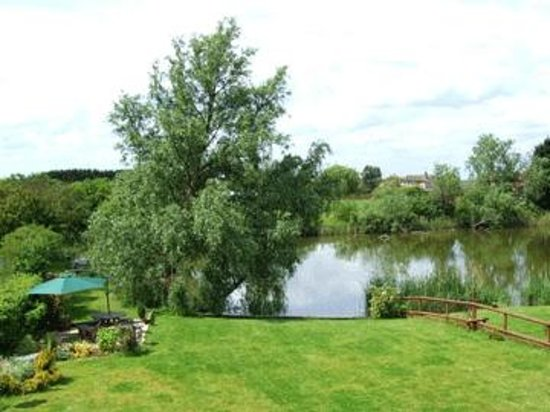 Waterside Guest House: Lake & garden, view from Duck room