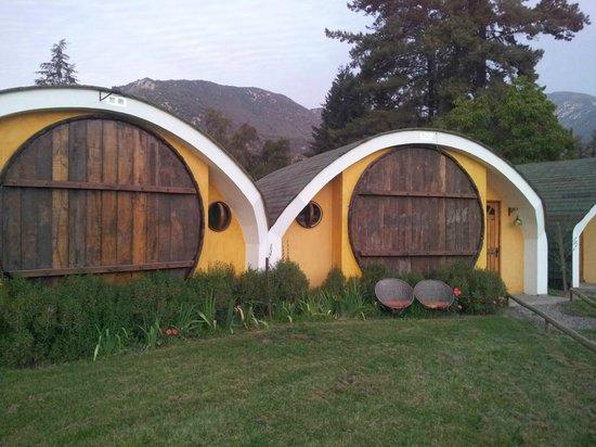La Calma de Rita : Habitaciones en cavas de vino