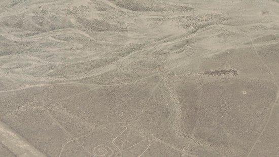 Lineas de Nazca: The ground
