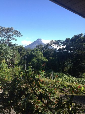 Nepenthe B&B: On a clear day you can see the volcano from the sitting area