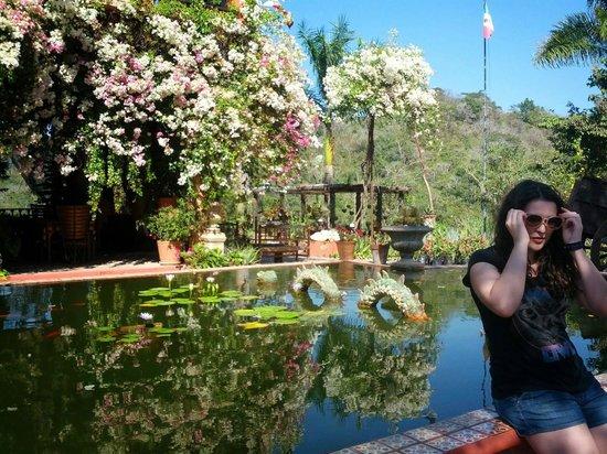 Vallarta Botanical Gardens: Sea Monster.