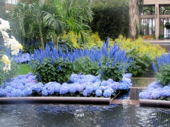 Longwood Gardens : INSIDE THE GREEN HOUSES
