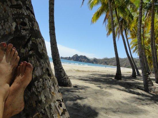 The Hideaway Hotel Playa Samara: Carrillo beach    fantastic