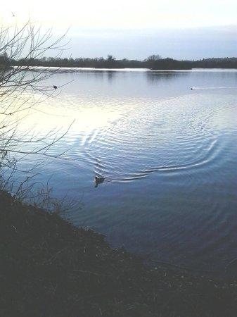 Branston Water Park (Dicembre 2013)