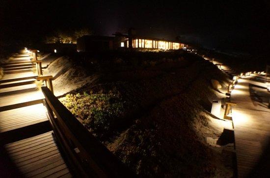 Hotel Alaia - Punta de Lobos: alrededor