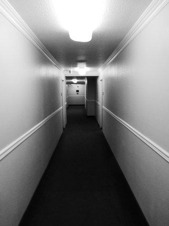 Comfort Inn - Los Angeles / West Sunset Blvd.: Hallway