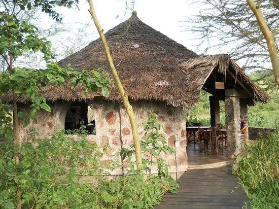 Kiboko Lodge: The tearoom where we had breakfast