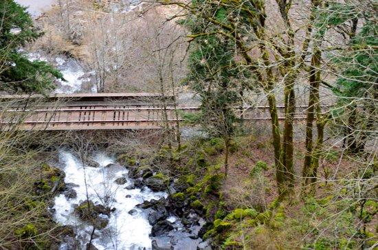 Columbia Gorge Hotel & Spa: Waterfalls