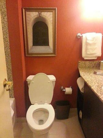 Doubletree Hotel Little Rock: Bath