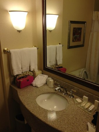 Hilton Garden Inn Las Vegas Strip South: Bath Room-2