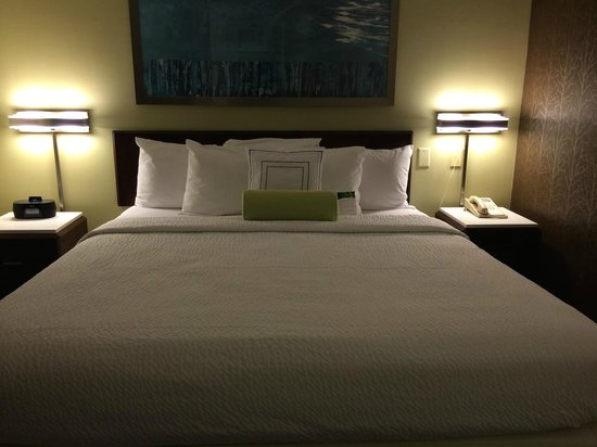 SpringHill Suites Columbus Airport Gahanna : Soft King Bed
