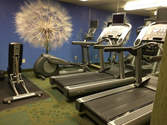 SpringHill Suites Columbus Airport Gahanna: Exercise Room