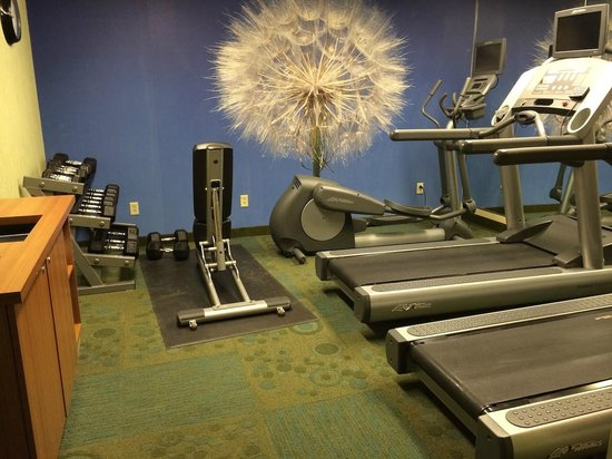 SpringHill Suites Columbus Airport Gahanna: Weights bench