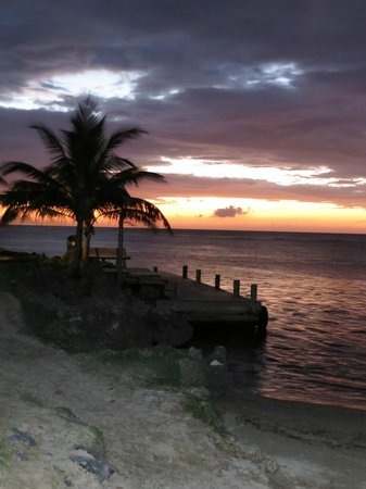 Las Rocas Resort & Dive Center: View over boat dock at sunset