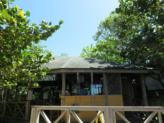 Las Rocas Resort & Dive Center: Quaint restuarant area