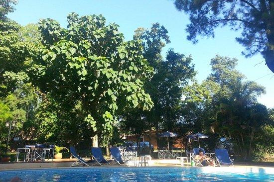Alexander Hotel: La piscina