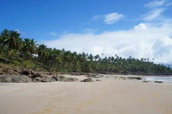 Jeribucacu Beach: Vista parcial do local