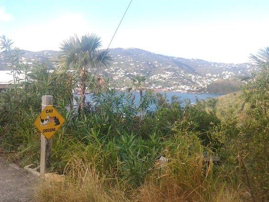 Virgin Islands Campground: Around the Island
