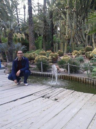 Jardín Artístico Nacional Huerto Del Cura: Sorprendente