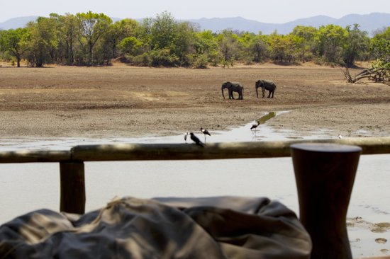 Chindeni Bushcamp - The Bushcamp Company: The view from the main lounge area