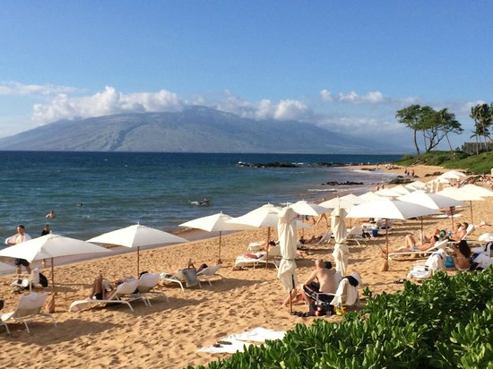 Andaz Maui At Wailea : Lots of beach