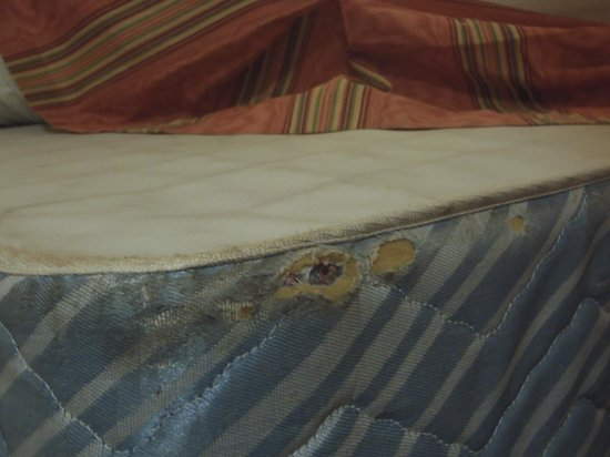 Hillside Inn at Killington : holes on box spring mattress