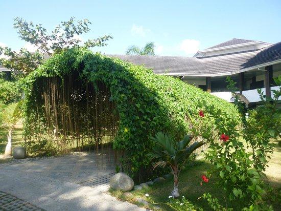 Balay Tuko Garden Inn: garden