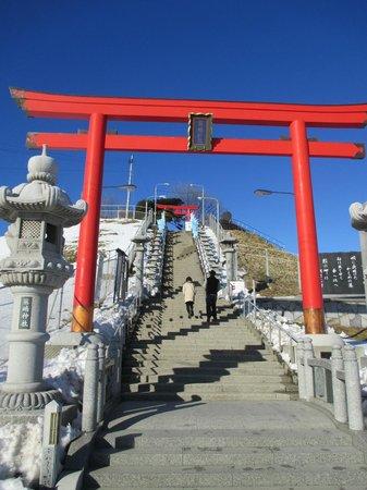 Kabushima Shrine : 蕪島神社 kabusima shrine