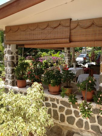 Green Palm Self Catering Apartments and Chalets: family place