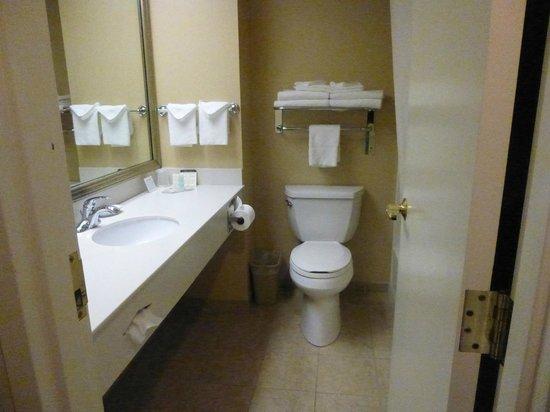 Comfort Inn Bellingham : Bathroom - Tub/shower combo just behind door
