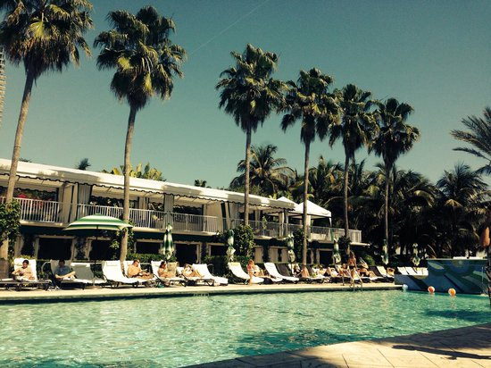 Kimpton Surfcomber Hotel : So great!