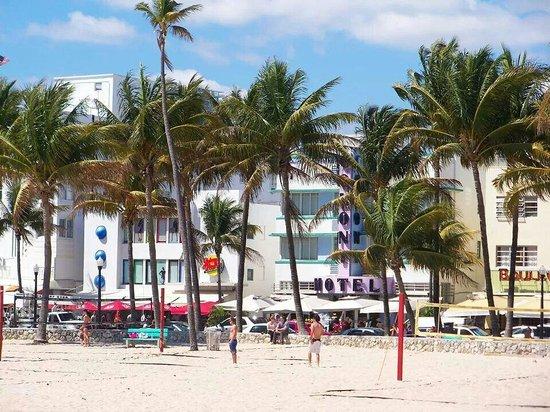 show user reviews lapis miami beach florida