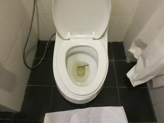 River City Hotel: Cigarete in toilet. Did you check room before guesst check in?