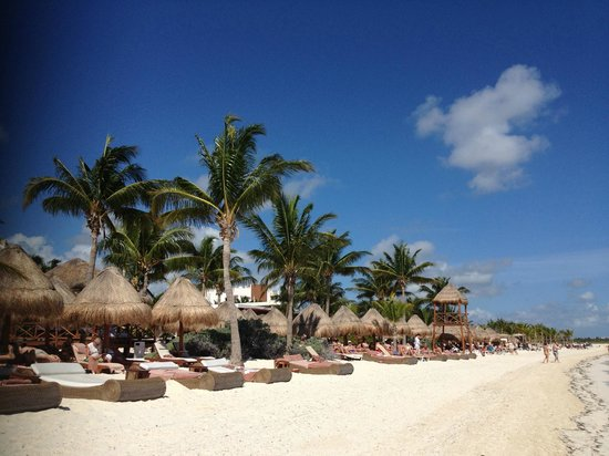 Excellence Playa Club Private Beach Area