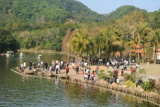 Xianhu Botanical Garden: 湖