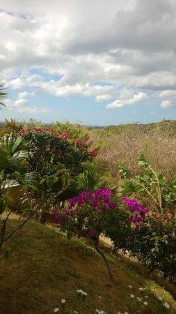 Soma Surf Resort: View from Soma