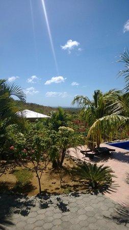Soma Surf Resort: Soma grounds