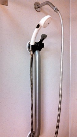 Comfort Inn Maingate: Disgusting shower wand, in disrepair and DIRTY!!