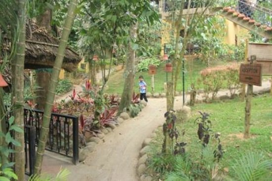 Club Mahindra Tusker Trails: Way to room