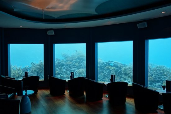Niyama Private Islands Maldives: A Beautiful View From The Underwater Club  Subsix