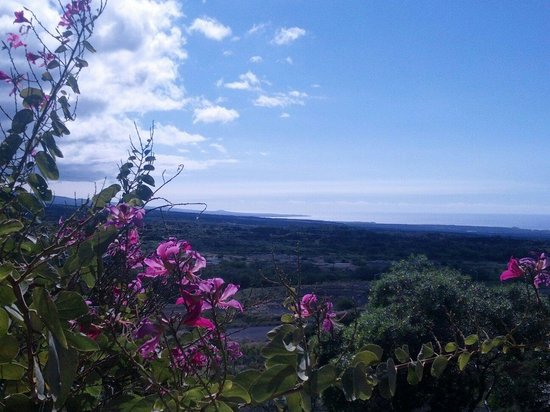Paniolo Greens Resort: View from our town home. Beautiful vistas, cool breezes, and just 10 minutes to the most exquisi