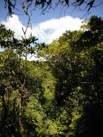 Selvatura-Park: view from zipline