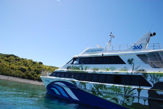 Tiritiri Matangi Island: Ferry