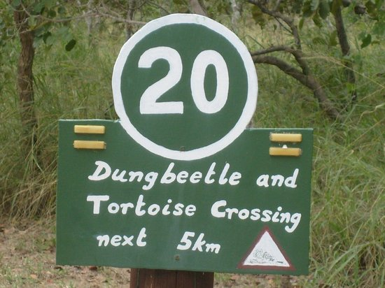 Maduma Boma Game Conservancy : Please stick to the speed limit