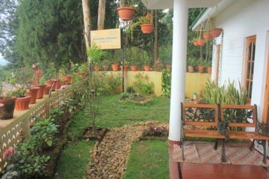 Munnar Dreams Homestay: The garden