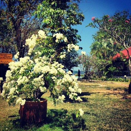 The Frangipani Langkawi Resort & Spa: 5