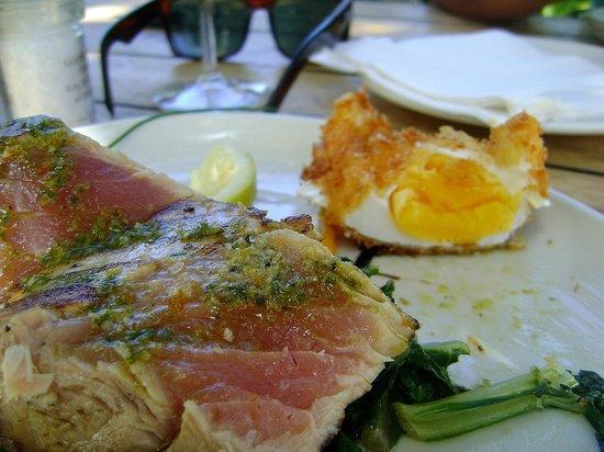 Peddlars & Co: Tuna with hard egg