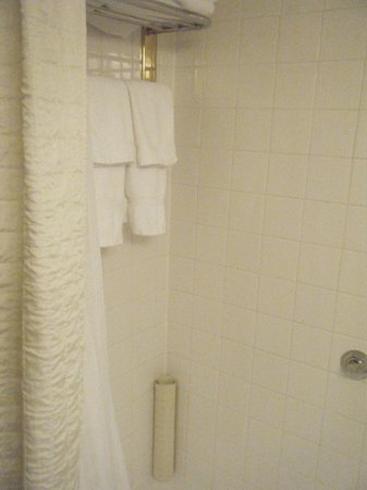 Mayflower Park Hotel: Bathroom 1119