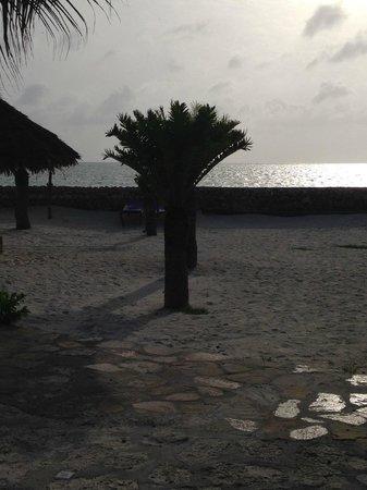 The Beach: la spiaggia